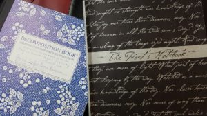 My two top notebooks right now - spiders and poetry.